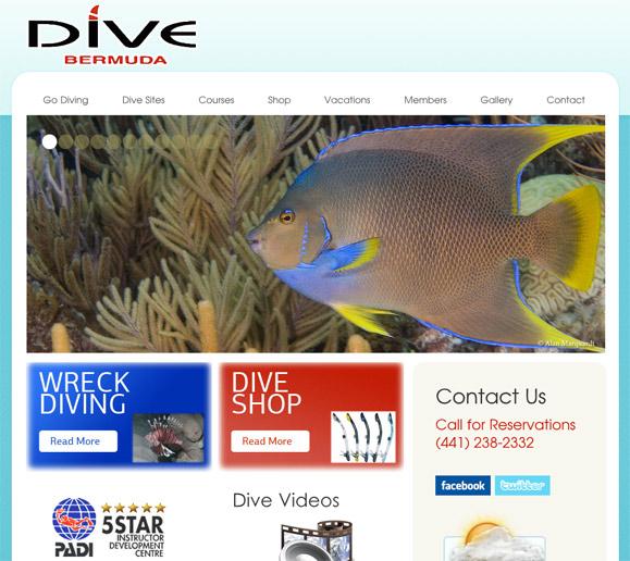dive-bermuda-home